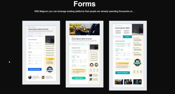 wunderschöne Templates gehören zur Mintbird. Online-Verkauf kann auch elegant und einfach sein!