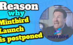 Mintbird launch postponed to the end of the month of August 2021
